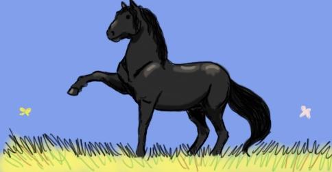 Horse Fiction