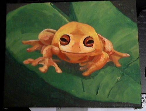 Froggy Acrylic Painting by Amanda Wood