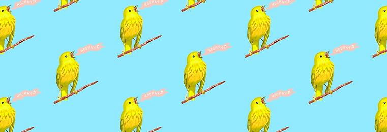 Hooray! Warbler Pattern by Amanda Wood